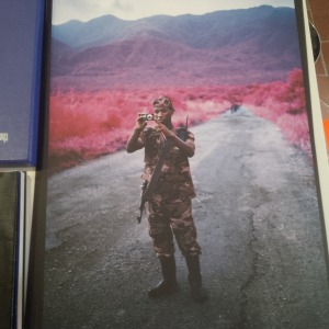 Richard Mosse installation at the Irish pavilion