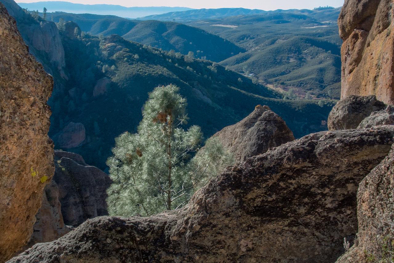 Pinnacles National Park, photo by Sue Klein