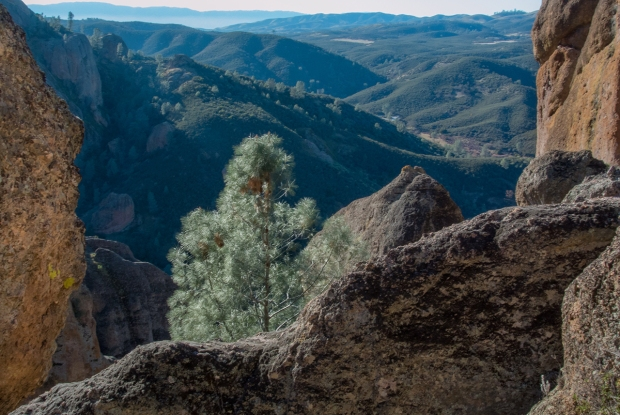 Pinnacles National Park, photo by Sue Klein